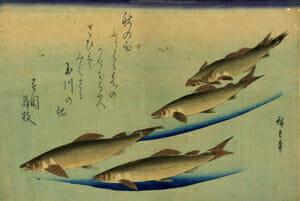 広重「魚づくし 鮎」
