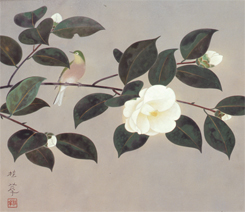 金島桂華 「白椿」