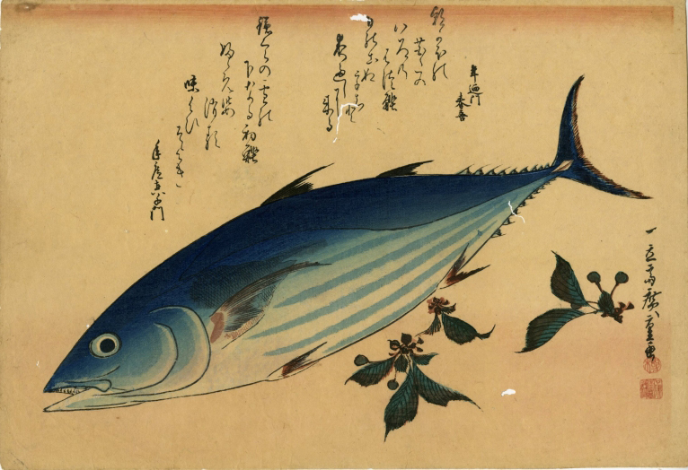 広重「魚づくし 鰹に桜」 価格 350,000円