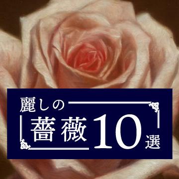 麗しの薔薇 10選