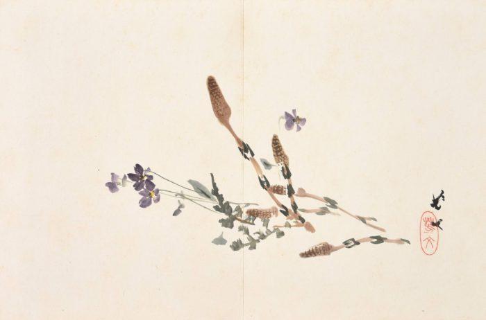 橋本 関雪松林 桂月「諸家画冊」