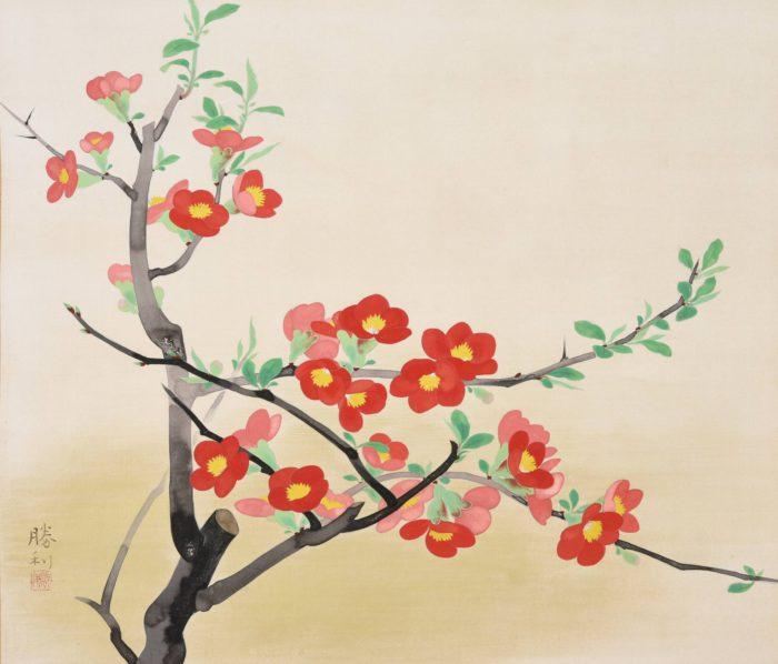 "Arai Shori ""Japanese Quince Flowers"""