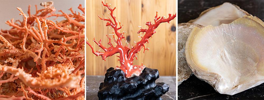 色とりどりの珊瑚は様々な種類がある。白蝶貝、象牙、ヘラ鹿角、鯨歯など異なる素材を組み合わせる事も多い。